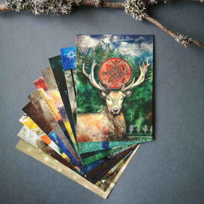Wildlife Postcard Set